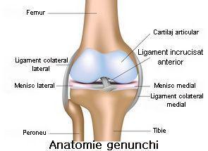leziuni la genunchi deschise)