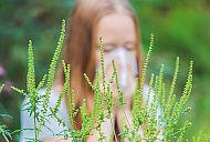 Cum ne protejam de alergia la ambrozie?