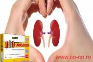 Urigood- supliment natural in afectiunile rinichilor