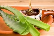Remedii naturiste cu aloe vera și miere