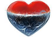 Ce este afectiunea coronariana?
