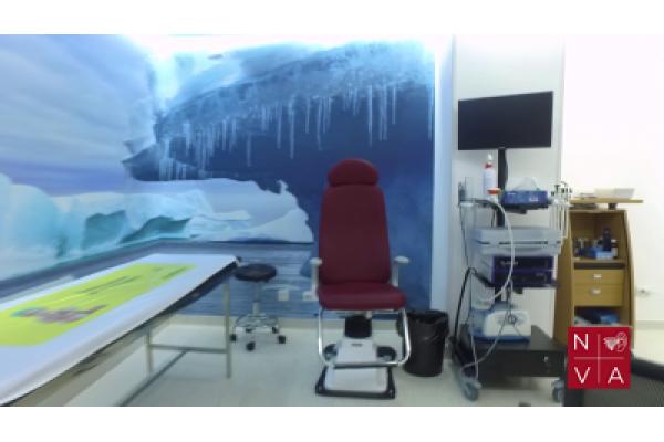 Clinica Nova Explorari ORL- Clinica Vertijului Bucuresti si Cluj - vlcsnap-2020-06-02-16h10m38s529.png