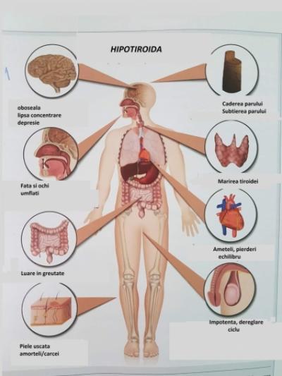 Cand sistemul metabolic este bolnav