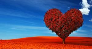 7 obiceiuri periculoase pentru inima