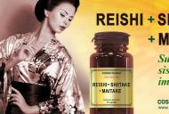 Reishi Shiitake Maitake - combinatia naturala eficienta in lupta cu cancerul