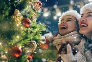 Alergia la bradul de Craciun: o afectiune ce poate strica sarbatorile de iarna