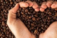 Efectele cafelei asupra inimii