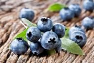 Coacazele: beneficii, informatii nutritionale si retete sanatoase