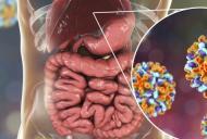 Hepatita B – simptome, cauze, tratament si preventie