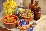 Homeopatia: intre mit si adevar