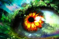 Probleme care pot cauza orbirea