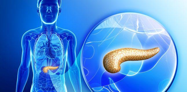puteți avea o pierdere în greutate cu pancreatită cum să obțineți metabolismul pentru a arde grăsimile