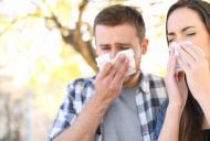 Racelile din timpul verii: simptome, tratament si prevenire
