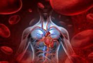 Transplantul de inima – beneficii si atentionare